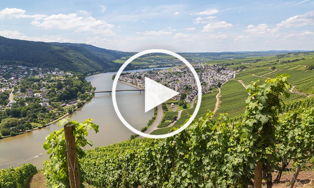 Europe-River-Wine-Cruises